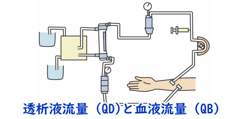 透析液流量(QD)と血液流量(QB)